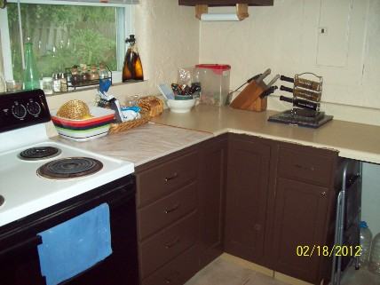 LeeAnn's Countertop Before