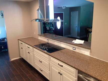 Kitchen Sink & Counter Top